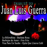 Tribute To Juan Luis Guerra