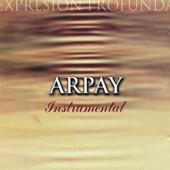 Grupo Arpay