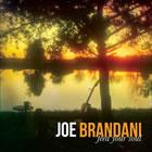 Joe Brandani