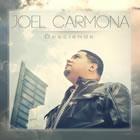 Joel Carmona