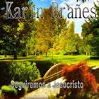 Karin Branes
