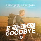 Soul Player